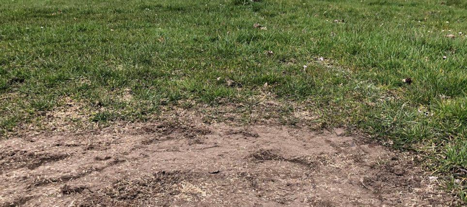 Fußballfreie Zeit genutzt – Ausbesserungen an den Plätzen in Kreuzkrug und Huddestorf